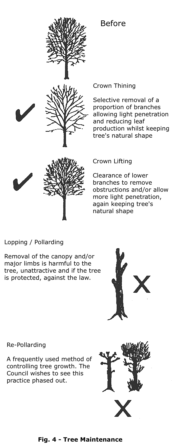 Trees Guide